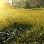 自転車通勤の意外な効果とは?!~【2016年全国大会プレゼン動画第3弾!】
