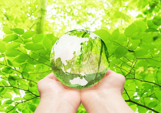 みどりと地球2
