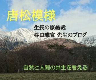 地球温暖化と環境問題の解決へ【唐松模様】